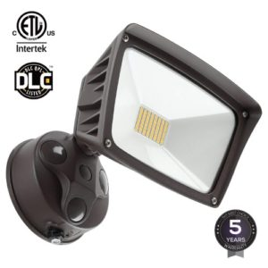 Leonlite LED Outdoor Flood Light